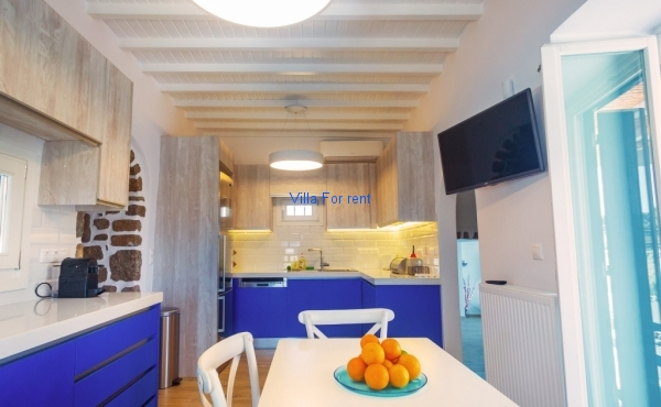 Villa Tropicalia - Kitchen 1e